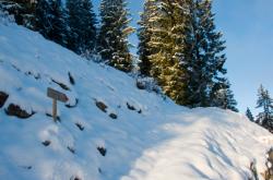 Sentiero monte Redondo Gromo